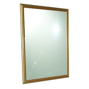 Collins 894-34x44 Gold Framed Mirror